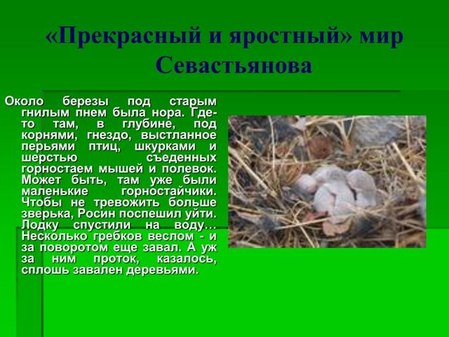 Севастьянов мой знакомый медведь анатолий